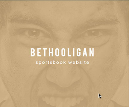 AGS Latest Projects Bethooligan Website